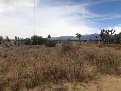 San Bernardino County Residential Lots & Land For Sale: Avenal Street