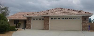 Apple Valley Single Family Home For Sale: 12834 Skyline Ranch Place