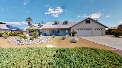 Apple Valley Single Family Home For Sale: 20353 Osuna Road