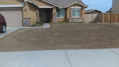 Adelanto Single Family Home For Sale: 11568 Prairie Drive