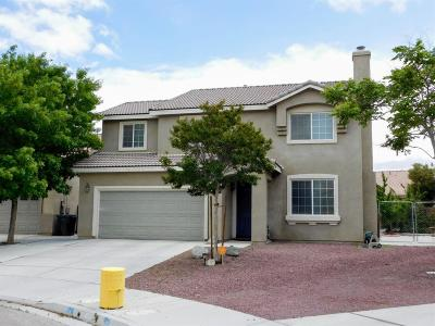 Victorville Single Family Home For Sale: 13145 Choctaw Lane