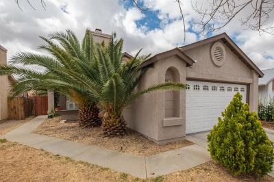 Victorville Single Family Home For Sale: 13871 Northstar Avenue