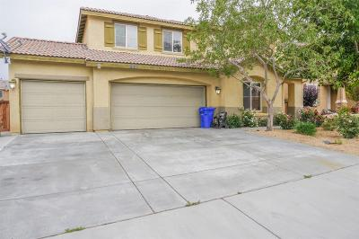 Victorville Single Family Home For Sale: 15235 Brucite Road