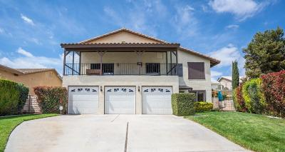 Victorville Single Family Home For Sale: 13360 Yellowstone Avenue