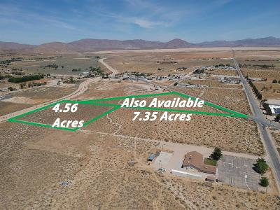 Lucerne Valley Residential Lots & Land For Sale: 0450-154-45-0000