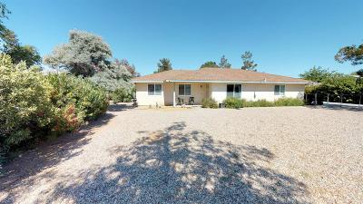 Apple Valley Single Family Home For Sale: 12546 Snapping Turtle Road