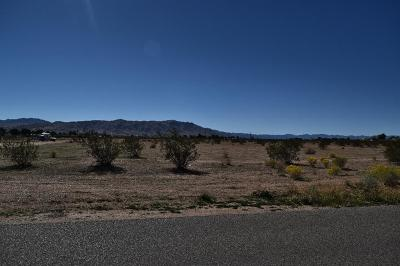 Apple Valley Residential Lots & Land For Sale: Pah-Ute Road