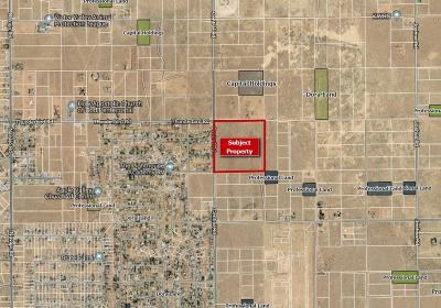 Apple Valley CA Residential Lots & Land For Sale: $336,000