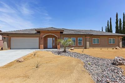 Victorville Single Family Home For Sale: 15975 Tokay Street