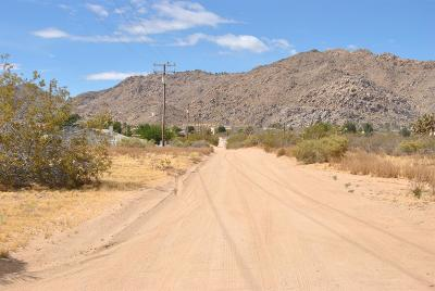 Apple Valley CA Residential Lots & Land For Sale: $54,900