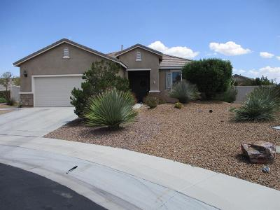 Apple Valley Single Family Home For Sale: 11071 Phoenix Road