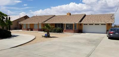 Hesperia Single Family Home For Sale: 17008 Eucalyptus Street