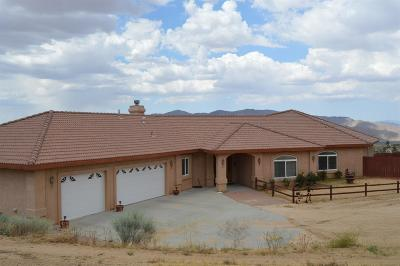 Apple Valley Single Family Home For Sale: 25650 Roundup Way