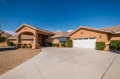 Apple Valley Single Family Home For Sale: 16389 Joshua Road