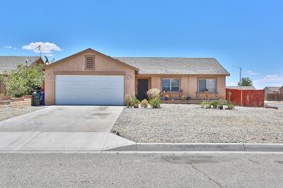 Adelanto Single Family Home For Sale: 17891 Juniper Street