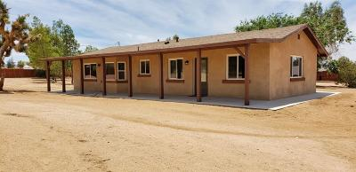 Apple Valley Single Family Home For Sale: 9650 Yucca Street