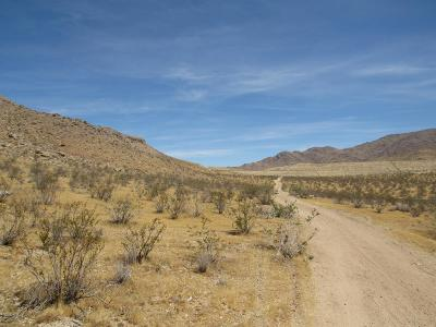 Apple Valley CA Residential Lots & Land For Sale: $20,000