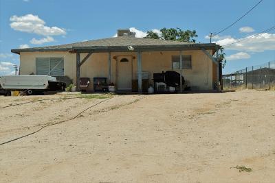 Hesperia Single Family Home For Sale: 11894 Bornite Avenue