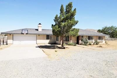 Apple Valley Single Family Home For Sale: 25064 Thunderbird Road