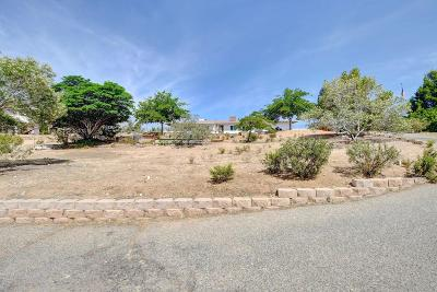 Victorville Single Family Home For Sale: 16498 Villa Drive