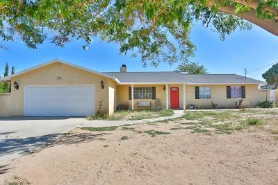 Hesperia Single Family Home For Sale: 16215 Larch Street