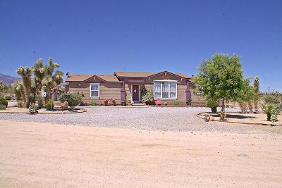 Pinon Hills Single Family Home For Sale: 12370 Pinon Hills Road