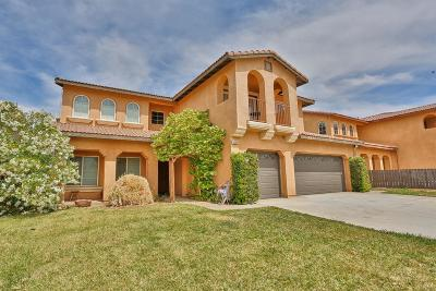 Victorville Single Family Home For Sale: 13061 Deep Water Street