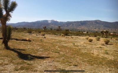 Pinon Hills CA Residential Lots & Land For Sale: $27,000