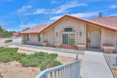 Hesperia Single Family Home For Sale: 18004 Orange Street