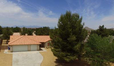 Apple Valley Single Family Home For Sale: 16430 Pauhaska Road