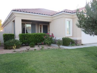 Apple Valley Single Family Home For Sale: 10980 Kelvington Lane
