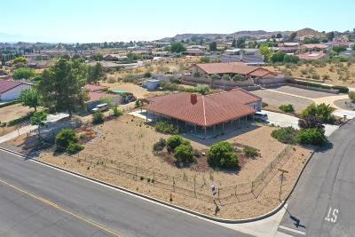 Apple Valley Single Family Home For Sale: 16340 Kamana Court