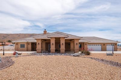 Apple Valley Single Family Home For Sale: 21775 Mojave Street