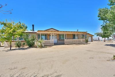Phelan Single Family Home For Sale: 4775 Nyack Road