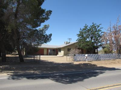 Victorville Single Family Home For Sale: 9875 Duncan Road