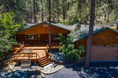 Wrightwood Single Family Home For Sale: 1485 Linnet Road