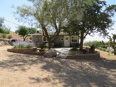 Apple Valley Single Family Home For Sale: 9068 Buena Vista Street
