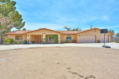 Apple Valley Single Family Home For Sale: 19319 Symeron Road