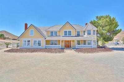 Apple Valley Single Family Home For Sale: 16564 Kasota Road