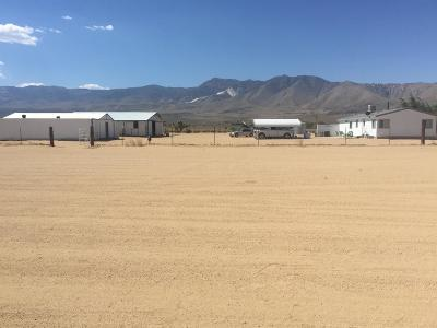 Lucerne Valley Single Family Home For Sale: 10451 Alamo Road