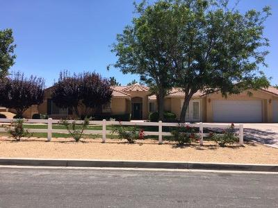 Apple Valley Single Family Home For Sale: 15358 Lookout Road