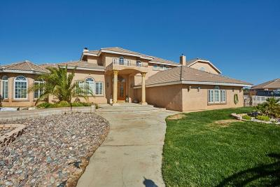 Oak Hills Single Family Home For Sale: 8845 Cactus Drive