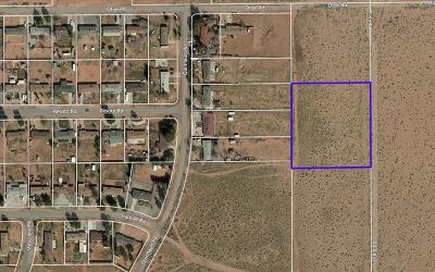 Apple Valley CA Residential Lots & Land For Sale: $39,900