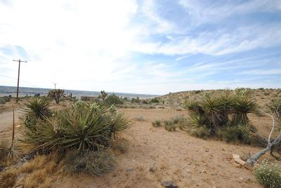 Apple Valley CA Residential Lots & Land For Sale: $48,000