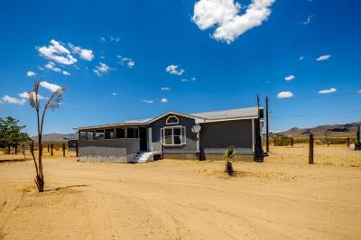 Lucerne Valley Single Family Home For Sale: 32850 Waalew Road