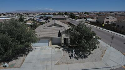 Victorville Single Family Home For Sale: 13503 Dellwood Road