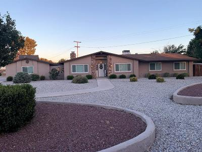 Apple Valley Single Family Home For Sale: 19907 Shoshonee Road