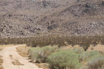 Lucerne Valley CA Residential Lots & Land For Sale: $15,900