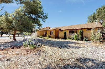 Hesperia Single Family Home For Sale: 18166 Walnut Street