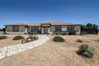Apple Valley Single Family Home For Sale: 22250 Hurons Avenue